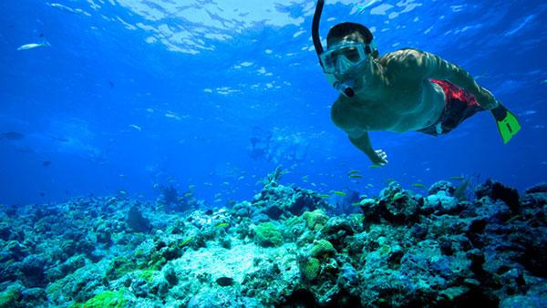 Tempat Snorkeling Pulau Merah