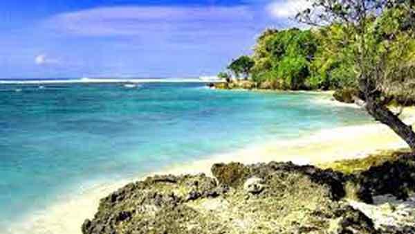 Pantai Plengkung Berselancar